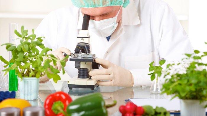 Como funciona a aplicação da nanotecnologia na indústria de alimentos?