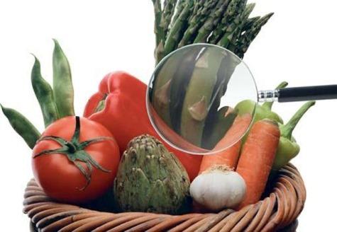 Segurança Alimentar para Cozinha Industrial
