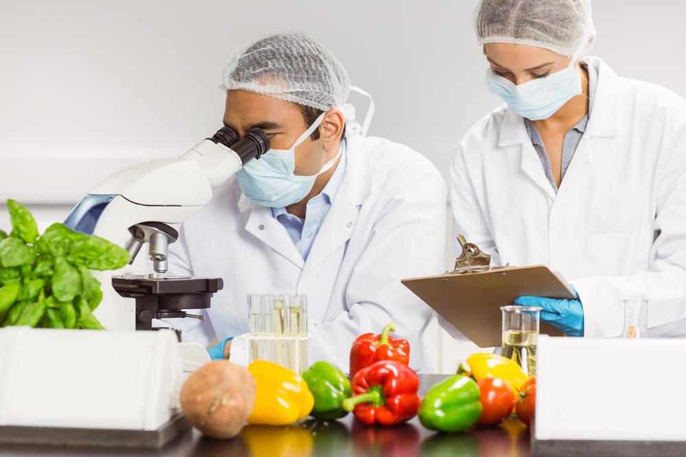 Segurança alimentar e segurança de alimentos