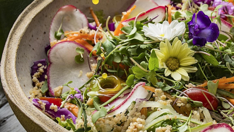 Alimentos orgânicos são alternativas saudáveis em feiras e restaurantes de Fortaleza