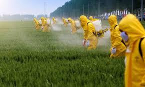Resíduo em alimentos não vai aumentar após liberação de novos agrotóxicos