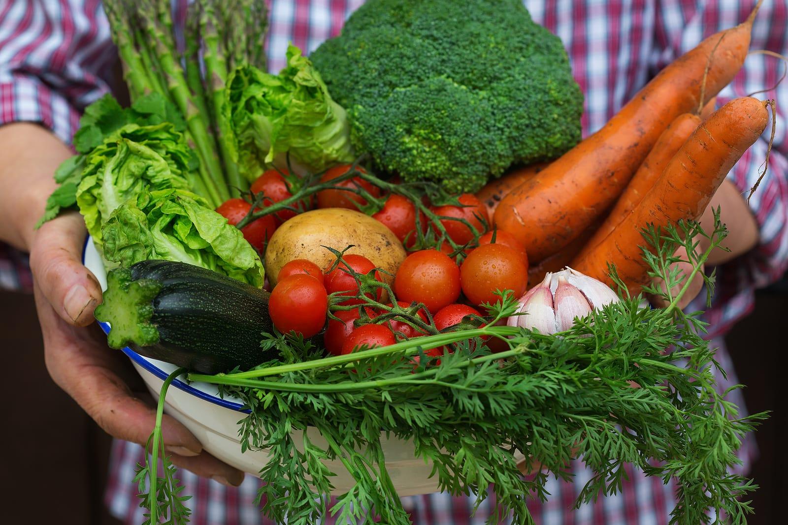 5 tipos de alimentos para incluir na rotina e ter uma vida mais saudável