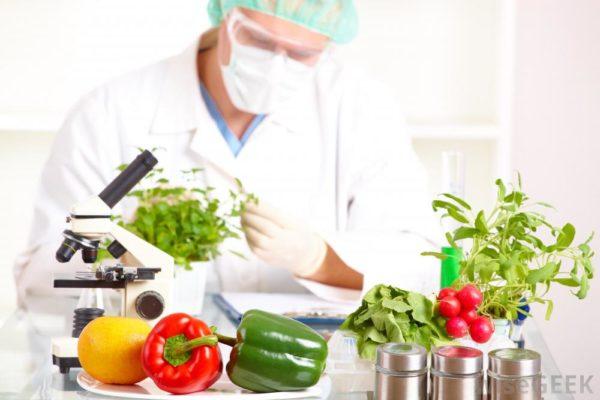 Qual a diferença entre um engenheiro de alimentos e um cozinheiro e um nutricionista?