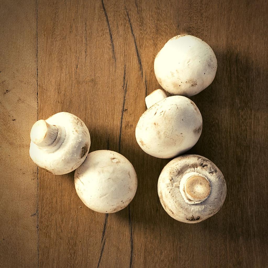 Cogumelos comestíveis: Benefícios à saúde, mercado e aspectos a respeito da sua produção
